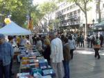 Comes Sant Jordi 2011 with workshops, dances and shows for the whole family